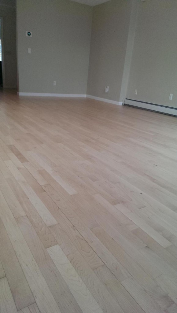 resanded maple hardwood floors
