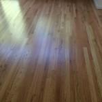 light stain hardwood floors