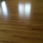 water damage repair wood floors