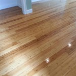 Bamboo Hardwood Floors
