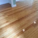 Bamboo Hardwood Floors