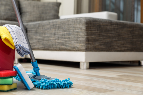 cleaning products for floors