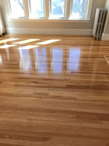 unfinished birch flooring with oild based finish