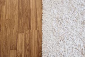 hardwood floor vs carpet